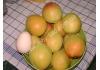 абрикос Селена (Sеlеnа)