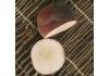 Персик Iris Rosso (Ирис Россо)